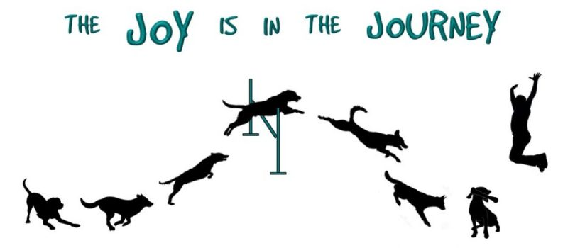 Agility: The Joy is in the Journey